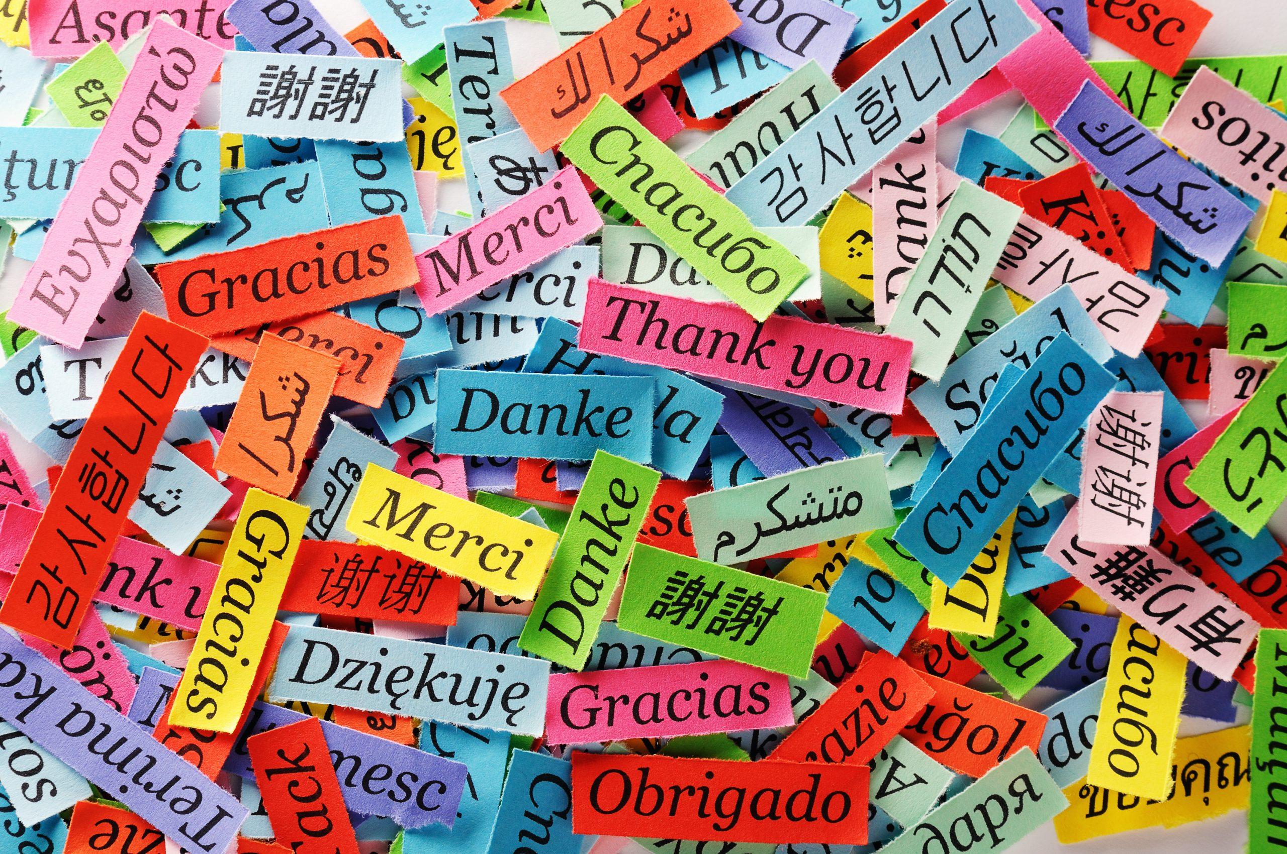 تسلط به چند زبان زنده دنیا